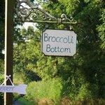 Entrance to Broccoli Bottom