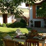 Breakfast in the garden (107607476)