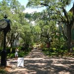 Visit Charleston and the College of Charleston