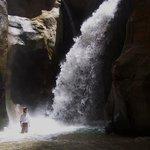 Petra Voyage Tours - Day Tour