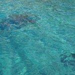 taka jest woda w Lloret