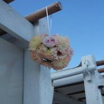 Cabana Decoration (given to us by a wedding party guest)