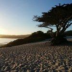 Carmel Beach: So beautiful