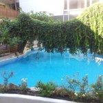 piscine central