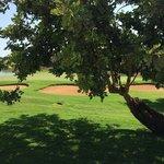 Dettaglio del campo da Golf visto in prossimità della piscina.