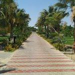 Here's A wonderfull photo of the pool/beach road