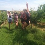 Stopped to explore the vines