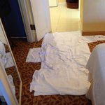 I checked in and found a puddle on the carpet of unknown origin. A rough start to my stay at the