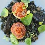 Chef Erik Zeda's special Aug'14- Arroz Negre - squid ink rice, scallop, purple carr