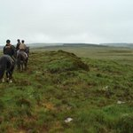 Out on the wonderful wild moors, miles from anywhere, escaping 'life'