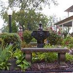Back fountain and garden area