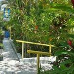 Foto de Laguna Mar Lodge