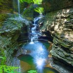Watkins glen streams