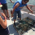 Elise pulling up the lobster trap