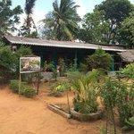 Photo of Sigiri Forest Villa