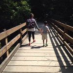 Loved this bridge! There were several trails of varying lengths. We took the 1/2 mile trail. The