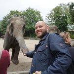 я и слоник