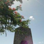 Village de Ménard - Restes du moulin