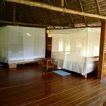 Foto de Osa Rainforest Rentals