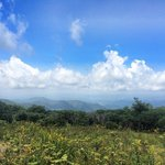 Views of the Smokey Mountains from Craggy Gardens