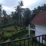Foto de The White Villas Ubud