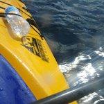 Southeast Kayaks