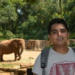 Me in front of African elephant