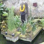 Il bel giardino curato