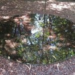 Láminas de agua en el jardín