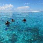 Scuba Diving - Maziwe Marine Reserve