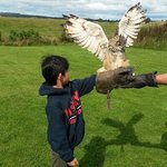 My son with the Eagle Owl