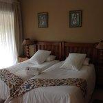 Crested Barbet Room