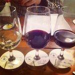 Degustação de vinhos, muito bem explicado.