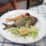 Sarago e triglia alla griglia (pescato del giorno)
