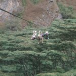 Zip lining near EQL. 6 lines, 3-400m high across ravines and canopy.
