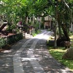 Garden path leading to my room.