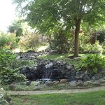 The water garden...