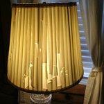 Completely shredded bedside lamp shade....shameful