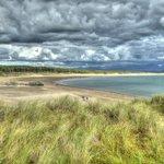 Llandwyn Island, Anglesey looking out to Newborough Beach