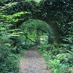 jardin zen du monastere