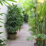 Green walkways from room to restaurant