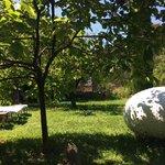 le jardin avec des oeuvres d'art et des arbres fruitiers