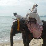 taxi to wedding