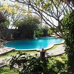 la piscine vue du bungalow 3 (avec mezzanine)