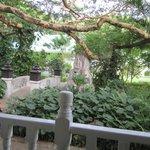 Garden View from balcony/lanai