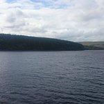lake,rear of b&b