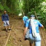 hiking up to Manoa Falls, Honolulu