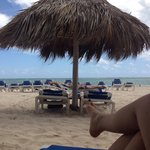 View near the beach