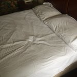 clean sheets with no stains or bedbugs
