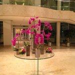Floral Foyer